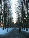 På juldagen kom äntligen snö och sol till Malmö